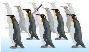 ilustrace-tucnaci