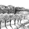 perokresba-ilustrace-10.jpg